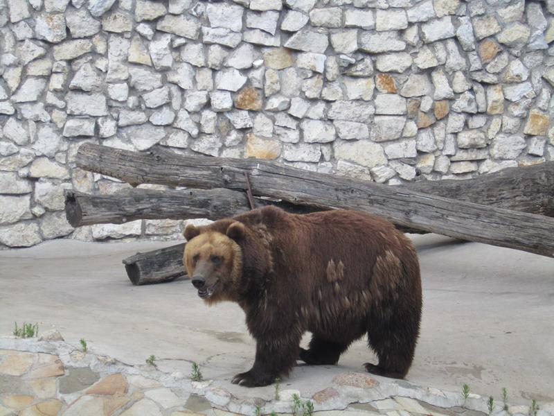 Московский зоопарк,5